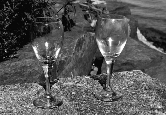 Wine-Glasses-Pen-Ryn-bw-s